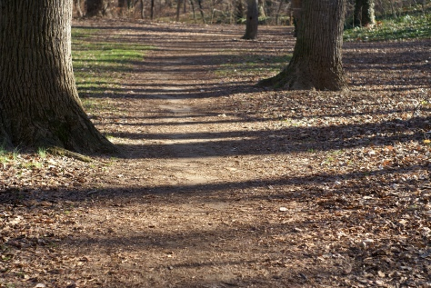Walk along